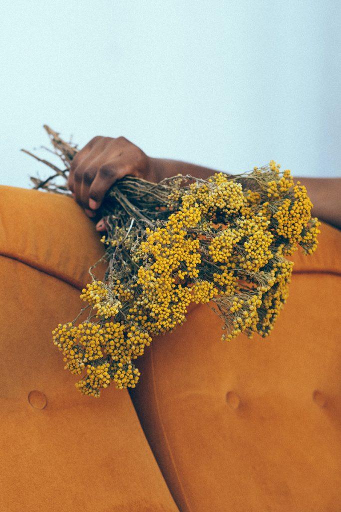 Metepec, primer lugar en producción de flores de ornato